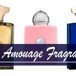 Best Amouage Fragrances